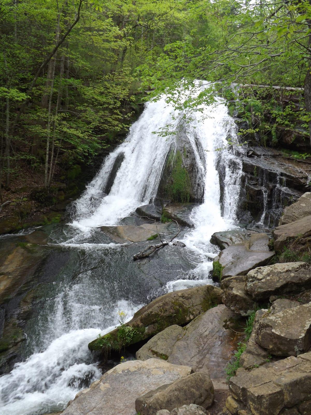 roaringrunwaterfall16